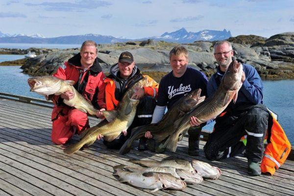 Рыбалка на Лофотенских островах (Офферсой)